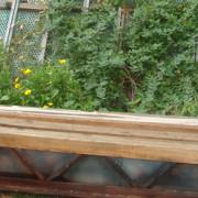 """Urban horticulture in Madrid.Photo: Huerta Agroecológica Comunitaria """"Cantarranas""""."""